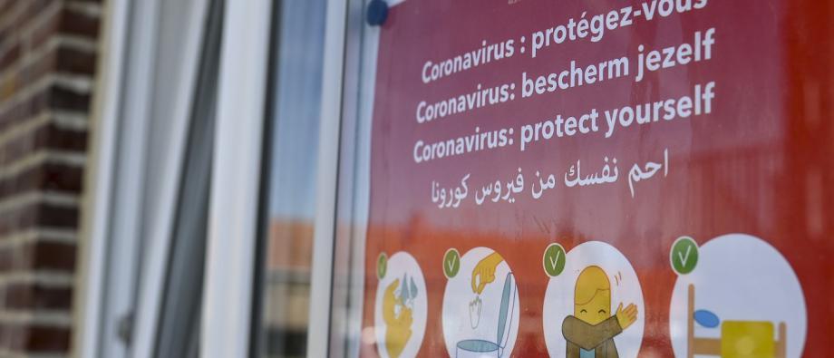 Fedasil reception coronavirus
